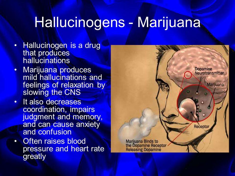 Hallucinogens - Marijuana Hallucinogen is a drug that produces hallucinations Marijuana produces mild hallucinations and feelings of relaxation by slo
