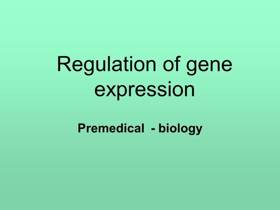 Regulation of gene expression Premedical - biology