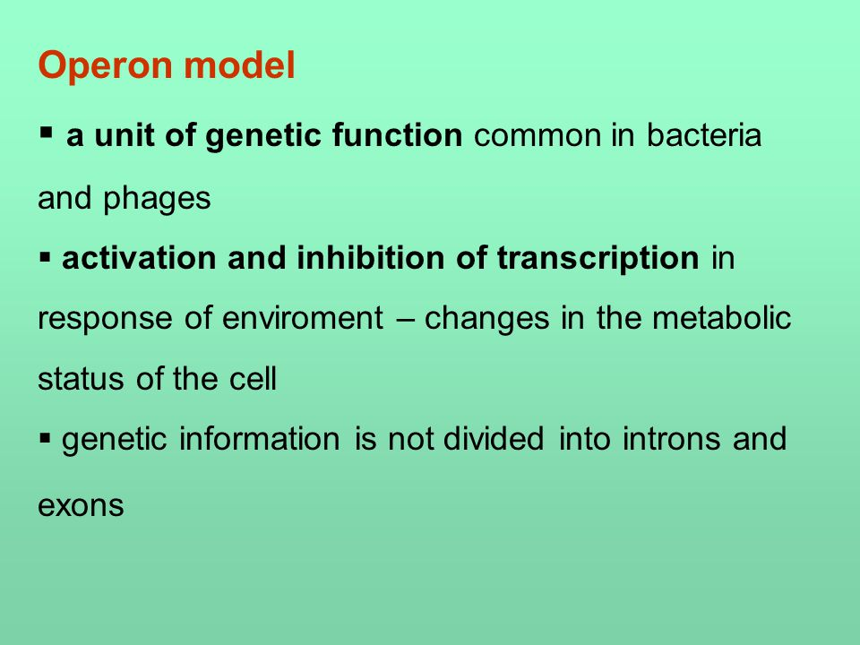 Operon model  a unit of genetic function common in bacteria and phages  activation and inhibition of transcription in response of enviroment – changes in the metabolic status of the cell  genetic information is not divided into introns and exons