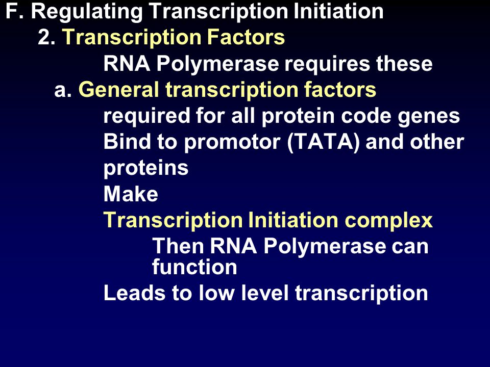 F. Regulating Transcription Initiation 2. Transcription Factors RNA Polymerase requires these a.