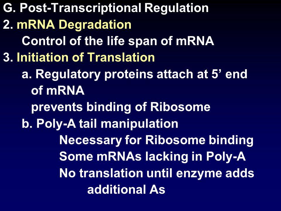 G. Post-Transcriptional Regulation 2. mRNA Degradation Control of the life span of mRNA 3.
