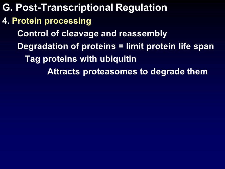 G. Post-Transcriptional Regulation 4.