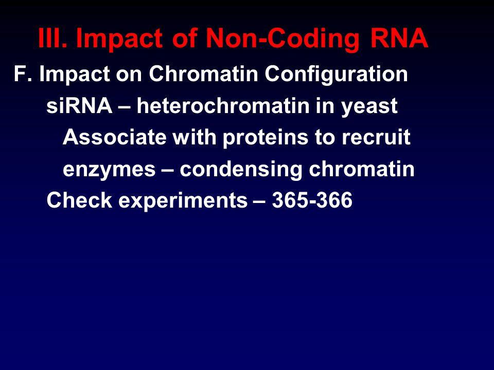 III. Impact of Non-Coding RNA F.