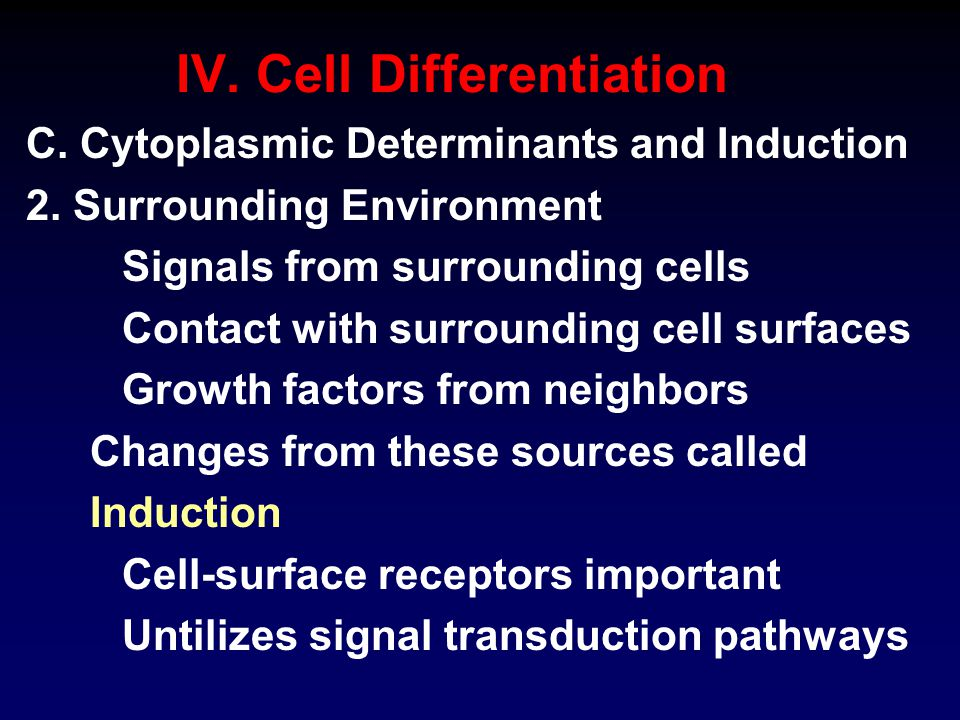 IV. Cell Differentiation C. Cytoplasmic Determinants and Induction 2.