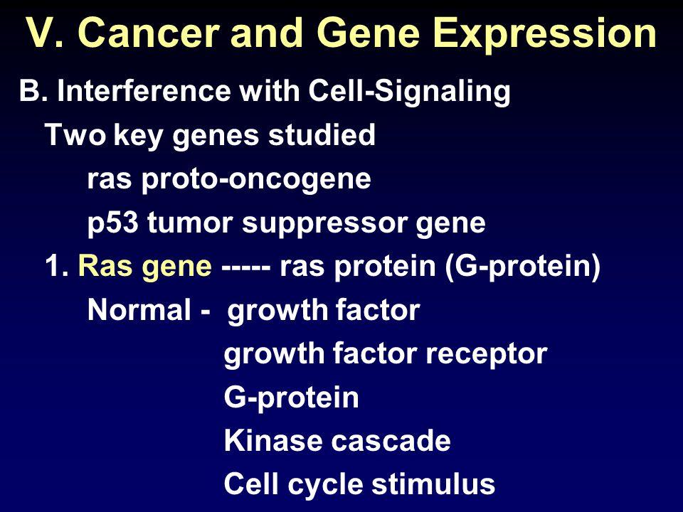 V. Cancer and Gene Expression B.