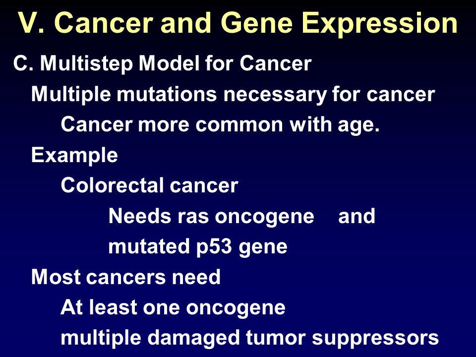 V. Cancer and Gene Expression C.