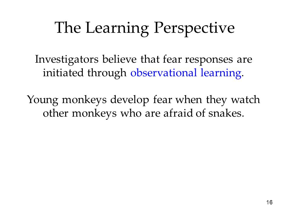 16 The Learning Perspective Investigators believe that fear responses are initiated through observational learning. Young monkeys develop fear when th