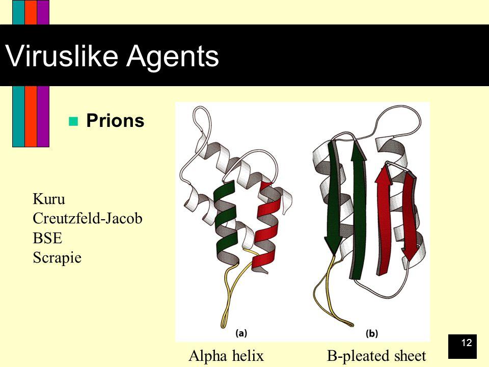 12 Viruslike Agents Prions Kuru Creutzfeld-Jacob BSE Scrapie Alpha helixB-pleated sheet