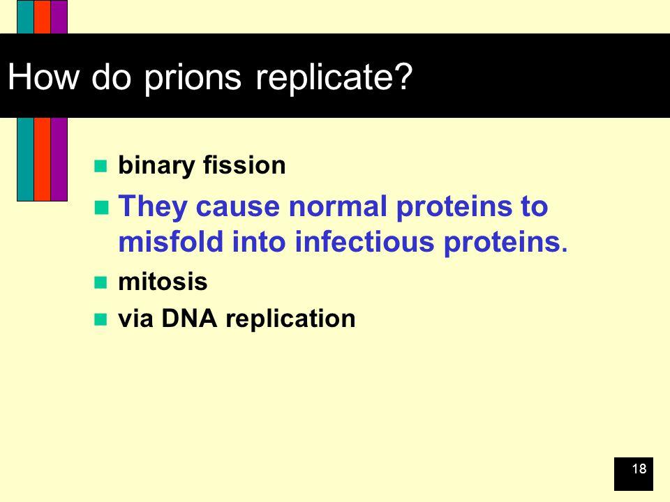 18 How do prions replicate.