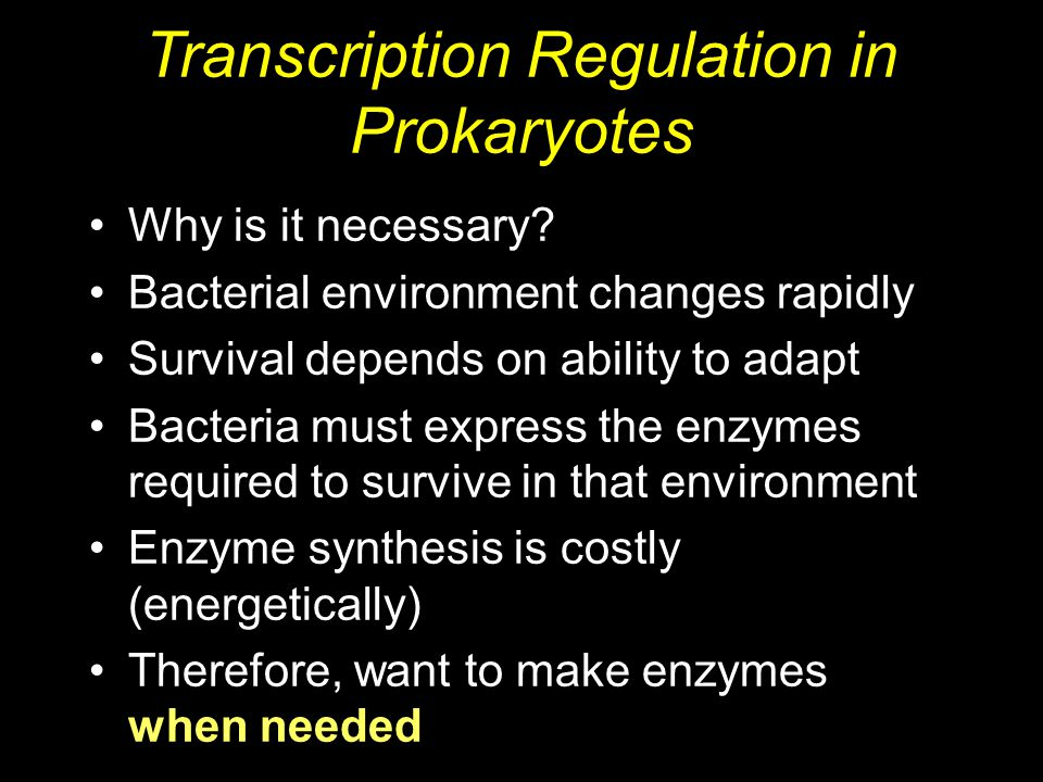 Why is it necessary? Bacterial environment changes rapidly Survival depends on ability to adapt Bacteria must express the enzymes required to survive