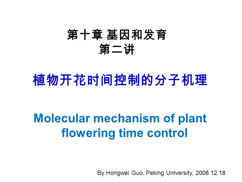 植物开花时间控制的分子机理 Molecular mechanism of plant flowering time control 第十章 基因和发育 第二讲 By Hongwei Guo, Peking University, 2008.12.18