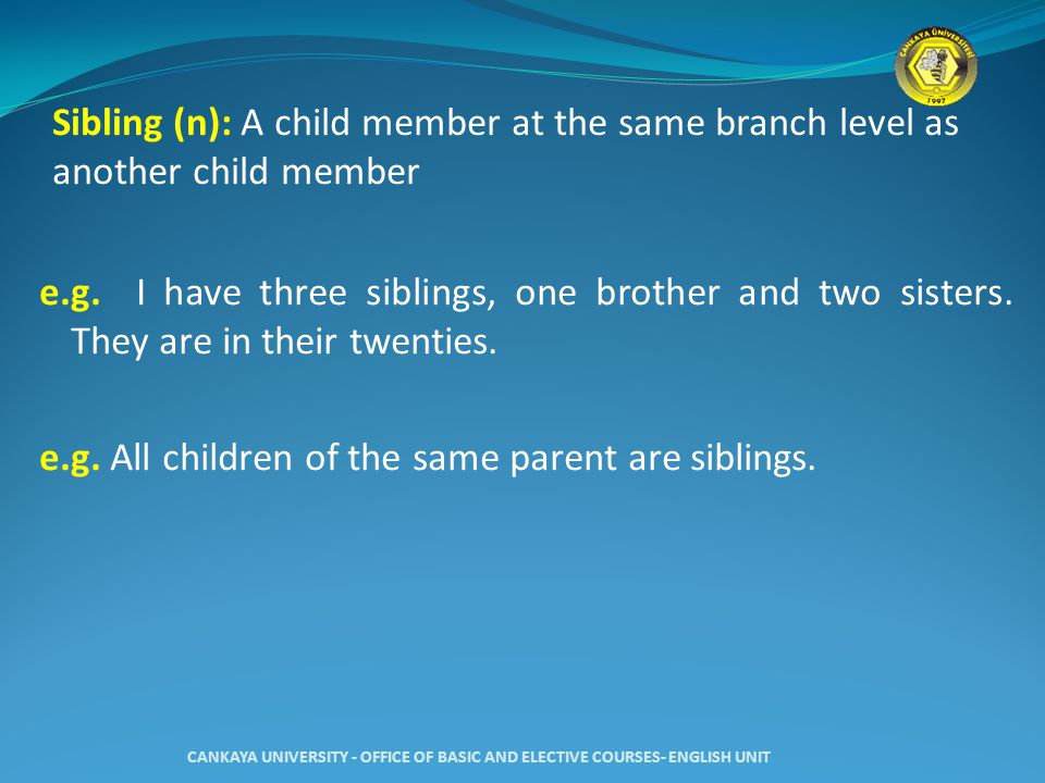Sibling (n): A child member at the same branch level as another child member e.g.