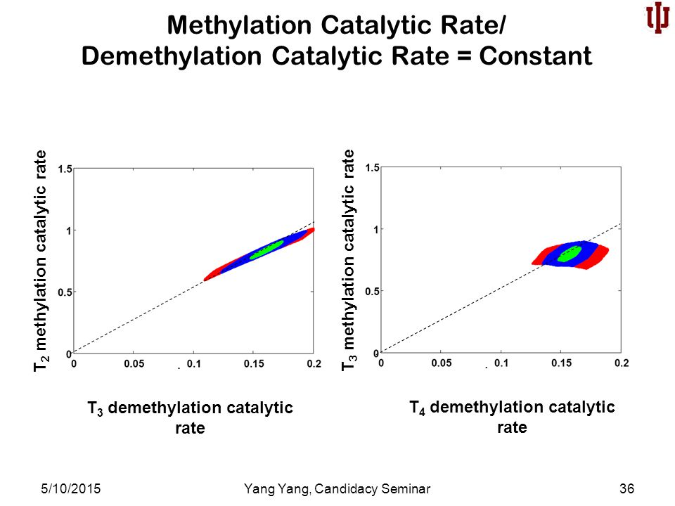 Methylation Catalytic Rate/ Demethylation Catalytic Rate = Constant 5/10/2015Yang Yang, Candidacy Seminar36 T 3 demethylation catalytic rate T 2 methylation catalytic rate T 4 demethylation catalytic rate T 3 methylation catalytic rate