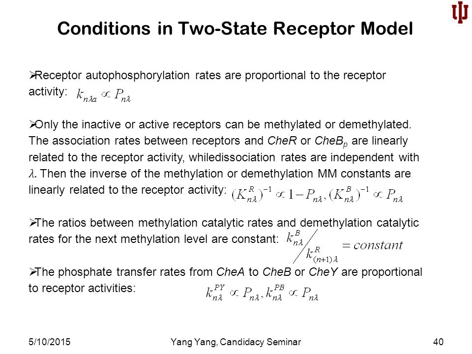 Conditions in Two-State Receptor Model 5/10/2015Yang Yang, Candidacy Seminar40  Receptor autophosphorylation rates are proportional to the receptor activity:  Only the inactive or active receptors can be methylated or demethylated.