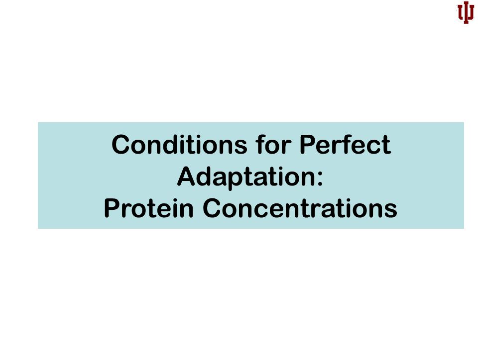 Conditions for Perfect Adaptation: Protein Concentrations