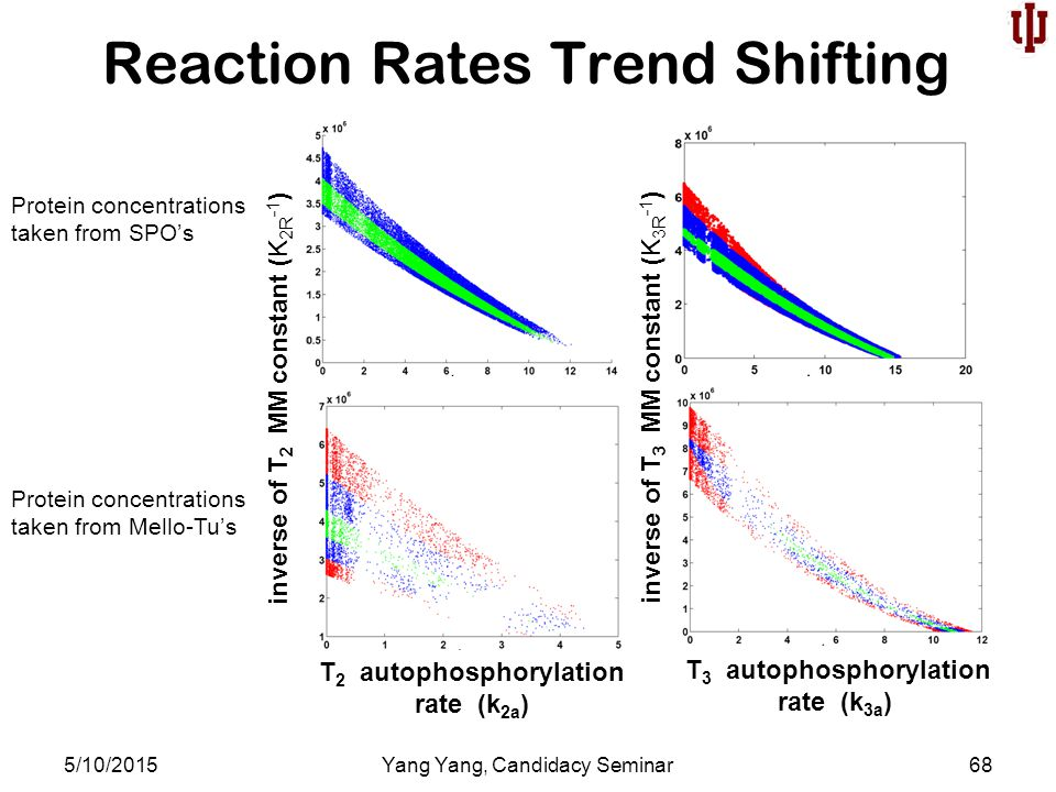 Reaction Rates Trend Shifting 5/10/2015Yang Yang, Candidacy Seminar68 T 2 autophosphorylation rate (k 2a ) T 3 autophosphorylation rate (k 3a ) inverse of T 2 MM constant (K 2R -1 ) inverse of T 3 MM constant (K 3R -1 ) Protein concentrations taken from SPO's Protein concentrations taken from Mello-Tu's