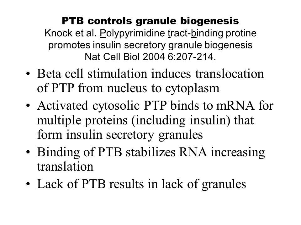 PTB controls granule biogenesis Knock et al.
