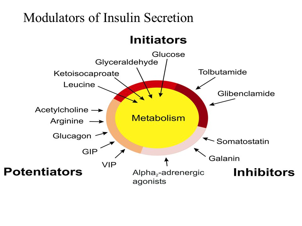 Modulators of Insulin Secretion
