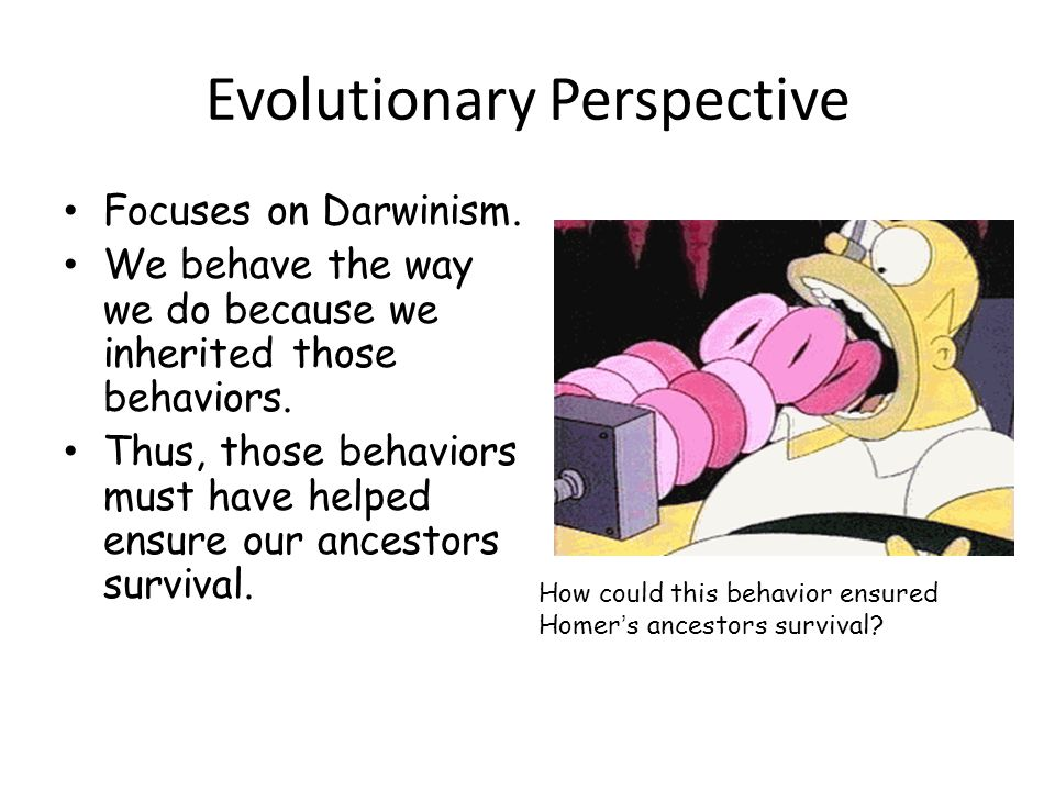 Evolutionary Perspective Focuses on Darwinism.