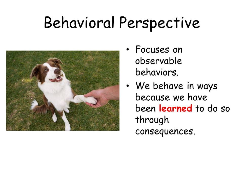 Behavioral Perspective Focuses on observable behaviors. We behave in ways because we have been learned to do so through consequences.