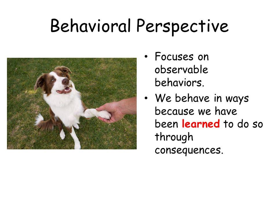 Behavioral Perspective Focuses on observable behaviors.