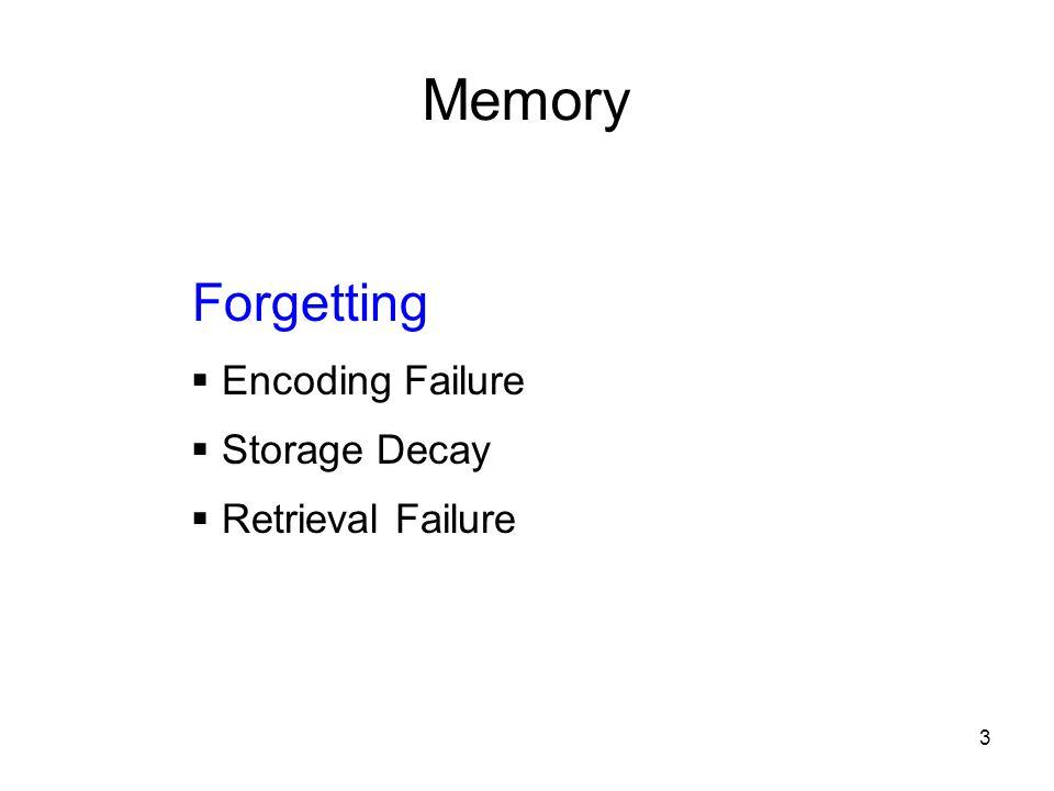 3 Memory Forgetting  Encoding Failure  Storage Decay  Retrieval Failure