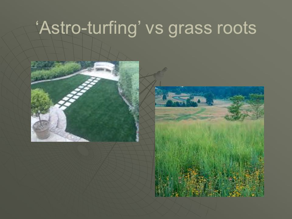 'Astro-turfing' vs grass roots