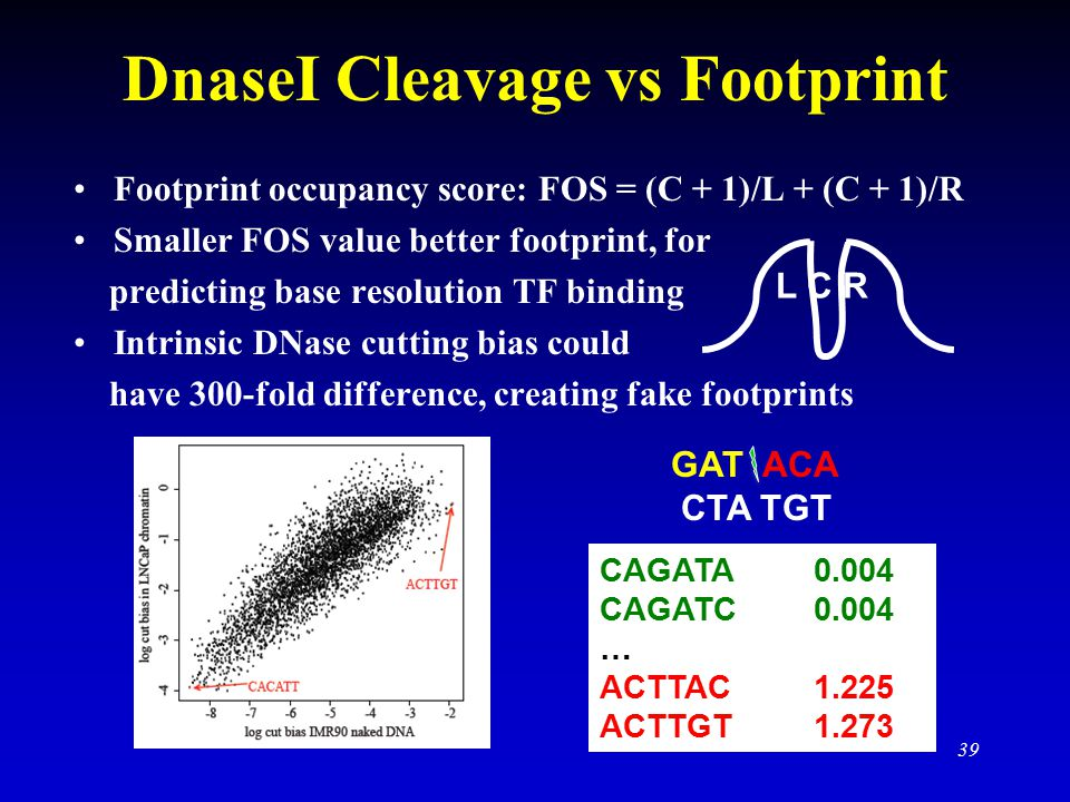 DnaseI Cleavage vs Footprint Footprint occupancy score: FOS = (C + 1)/L + (C + 1)/R Smaller FOS value better footprint, for predicting base resolution TF binding Intrinsic DNase cutting bias could have 300-fold difference, creating fake footprints 39 GAT ACA CTA TGT CAGATA0.004 CAGATC0.004 … ACTTAC1.225 ACTTGT1.273 L C R