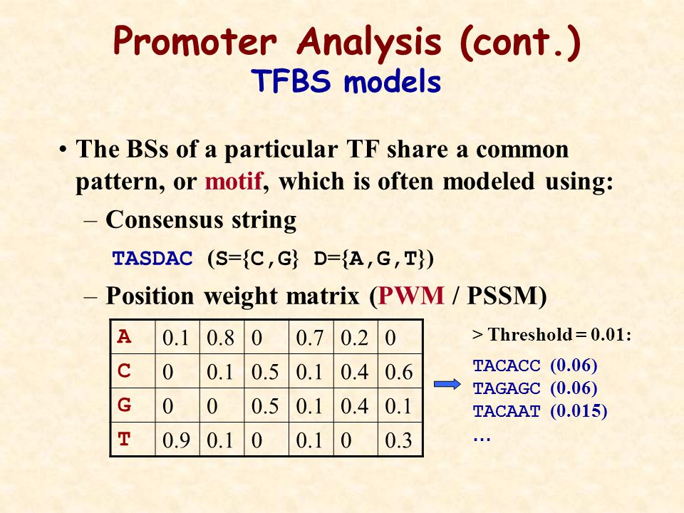 The BSs of a particular TF share a common pattern, or motif, which is often modeled using: –Consensus string TASDAC ( S ={ C,G } D ={ A,G,T }) –Position weight matrix (PWM / PSSM) Promoter Analysis (cont.) TFBS models 00.20.700.80.1 A 0.60.40.10.50.10 C 0.40.10.500 G 0.300.10 0.9 T > Threshold = 0.01: TACACC (0.06) TAGAGC (0.06) TACAAT (0.015) …