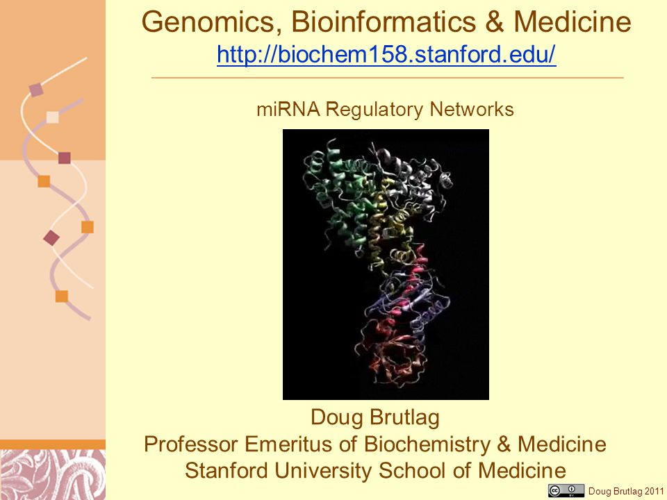 Doug Brutlag 2011 Genomics, Bioinformatics & Medicine http://biochem158.stanford.edu/ http://biochem158.stanford.edu/ Doug Brutlag Professor Emeritus