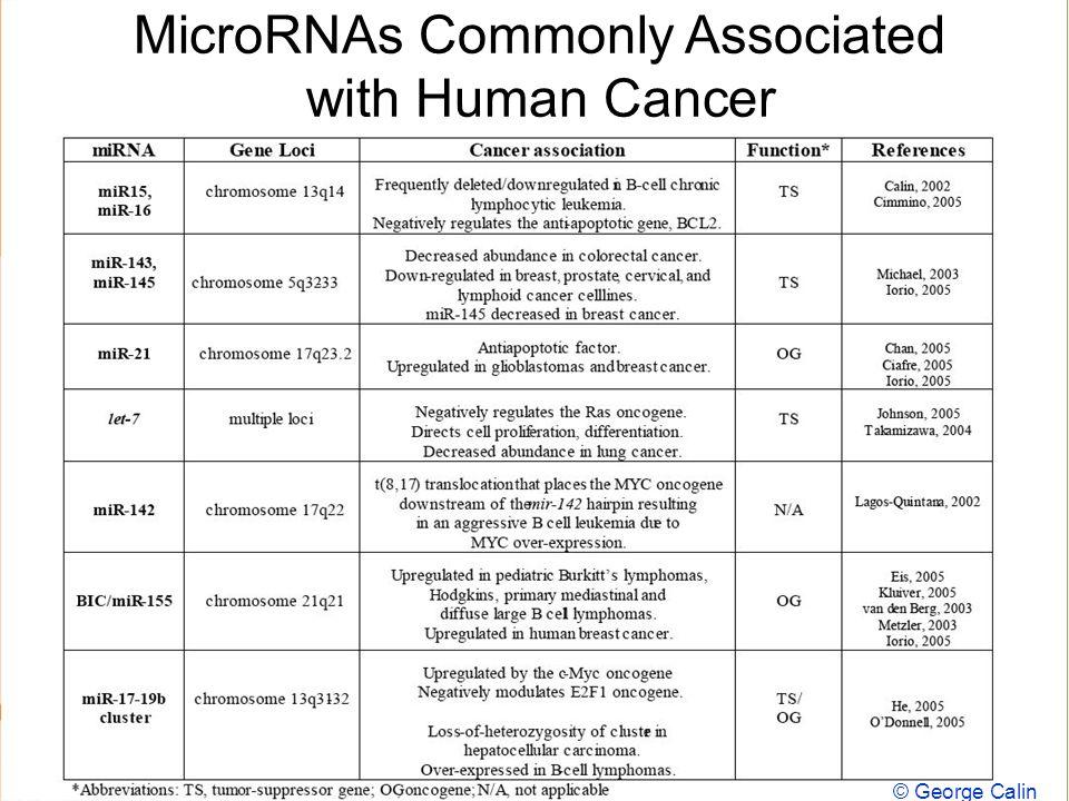 Doug Brutlag 2011 Micro RNAs Commonly Associated with Human Cancer © Frank Slack frank.slack@yale.edu MicroRNAs Commonly Associated with Human Cancer