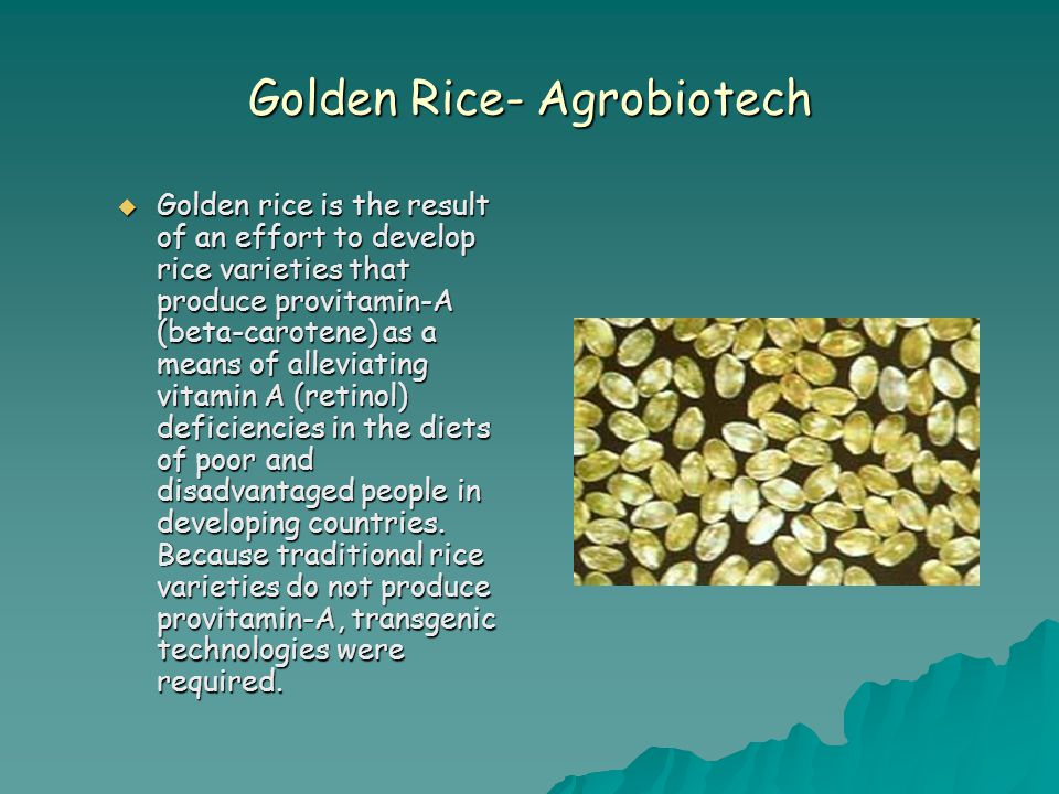 Golden Rice- Agrobiotech  Golden rice is the result of an effort to develop rice varieties that produce provitamin-A (beta-carotene) as a means of alleviating vitamin A (retinol) deficiencies in the diets of poor and disadvantaged people in developing countries.