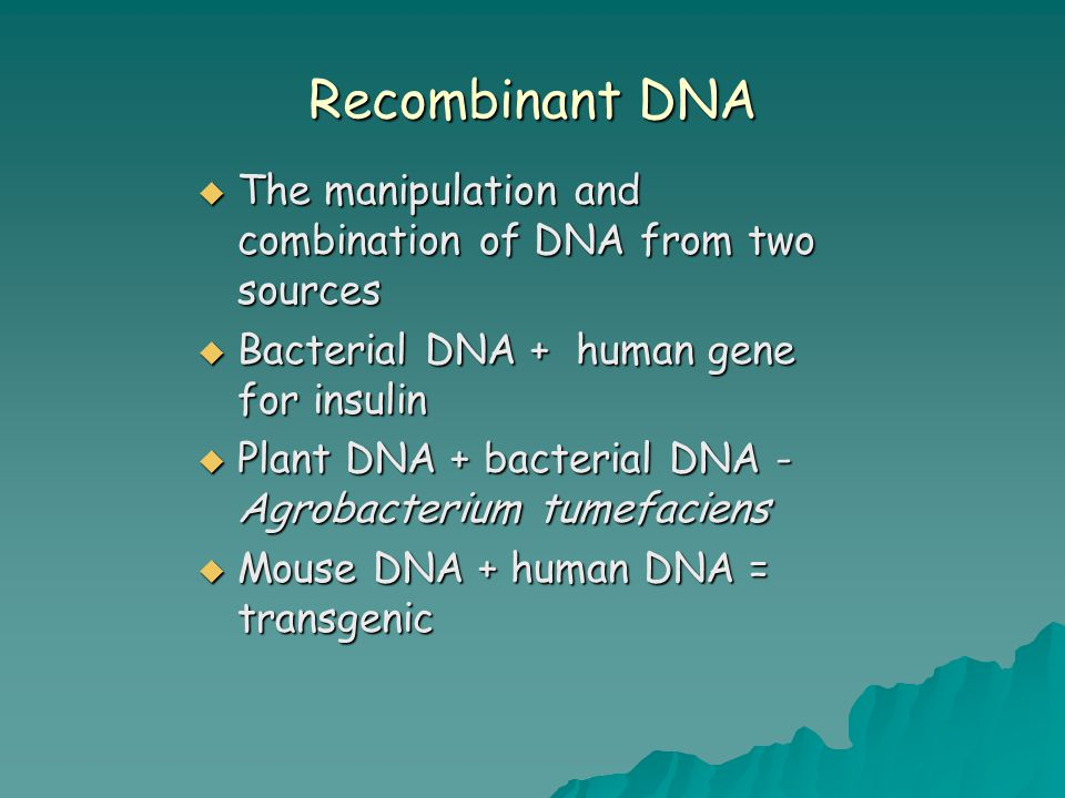 Recombination  Insert a foreign gene into a host Plasmid ( for example, exogenous DNA) into the bacterial cell – transformation or transfection-organism referred to as transgenic ( eukaryote ) or recombinant( prokaryote) Plasmid ( for example, exogenous DNA) into the bacterial cell – transformation or transfection-organism referred to as transgenic ( eukaryote ) or recombinant( prokaryote)  Goal – To produce many copies ( clones) of a particular gene  Reporter gene – tags gene of interest – to identify the presence of a gene