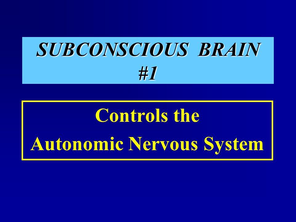SUBCONSCIOUS BRAIN #1 Controls the Autonomic Nervous System