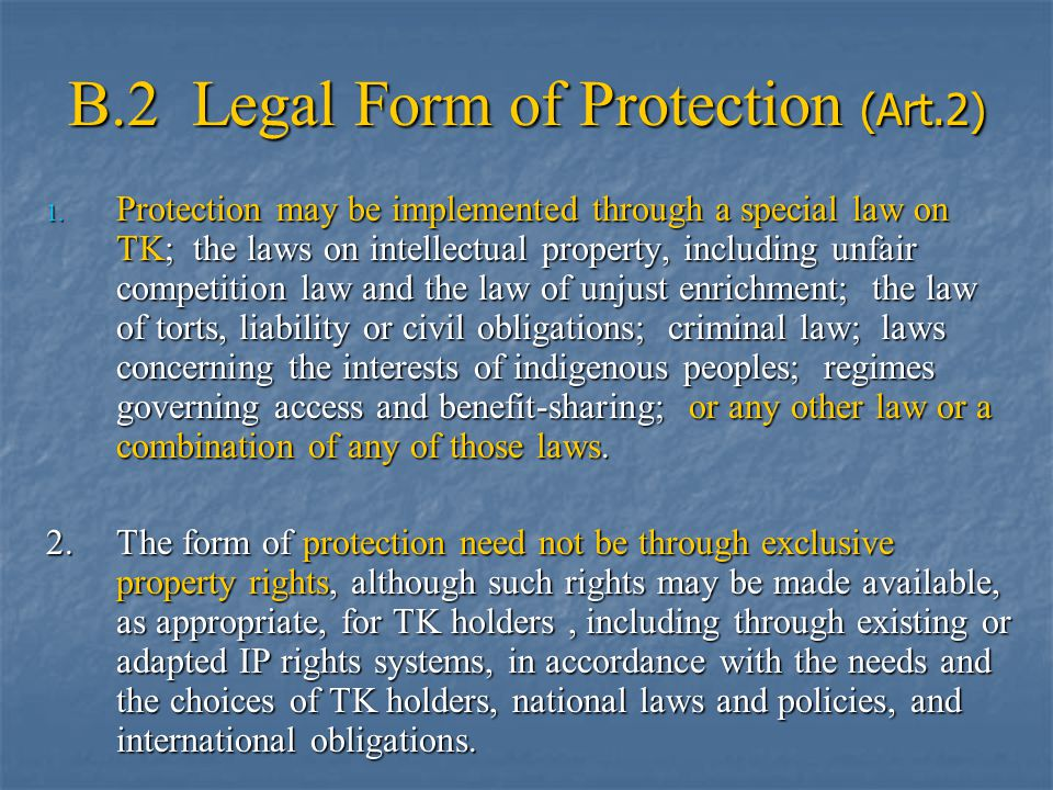 B.2 Legal Form of Protection (Art.2) 1.