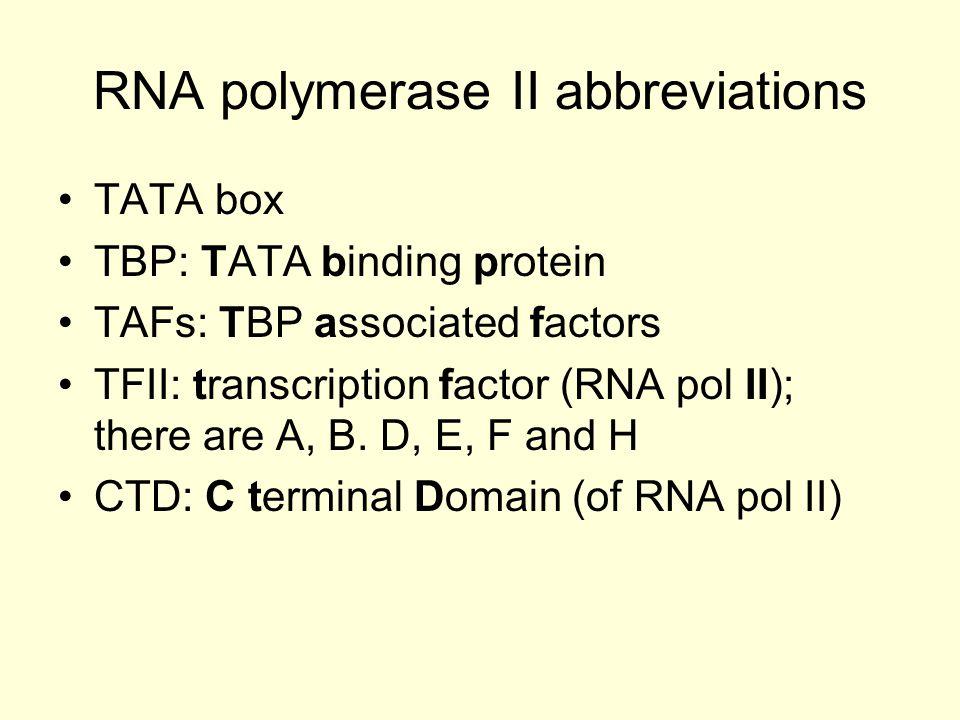 RNA polymerase II abbreviations TATA box TBP: TATA binding protein TAFs: TBP associated factors TFII: transcription factor (RNA pol II); there are A,