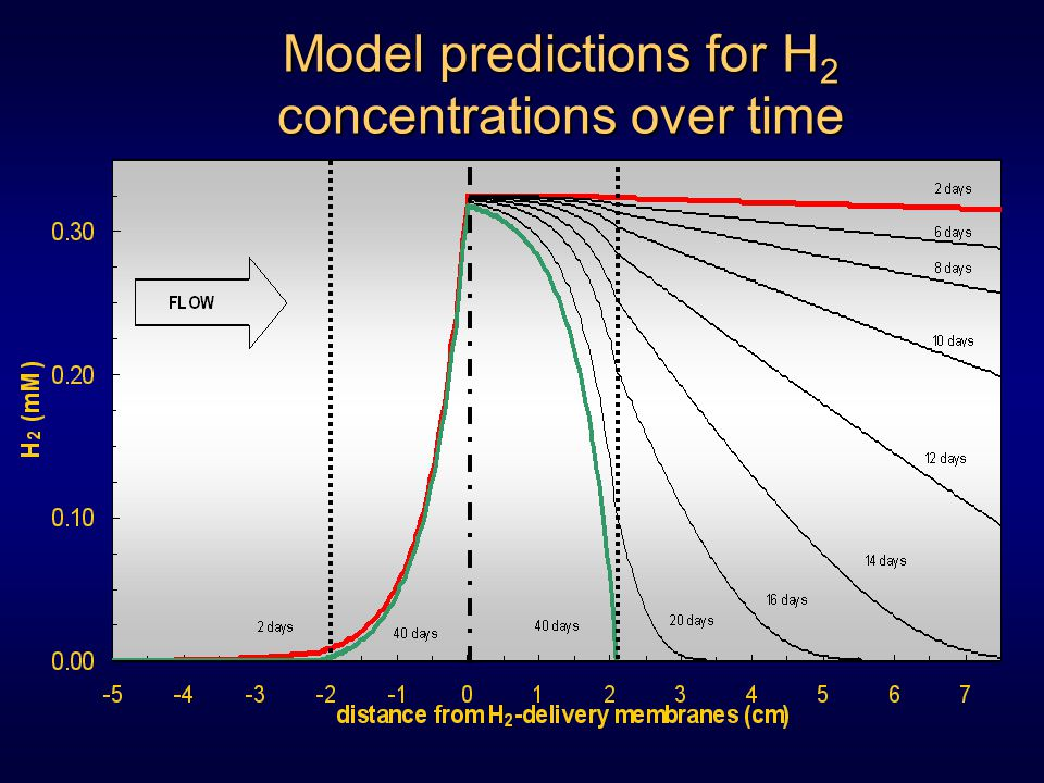 Model predictions for H 2 concentrations over time