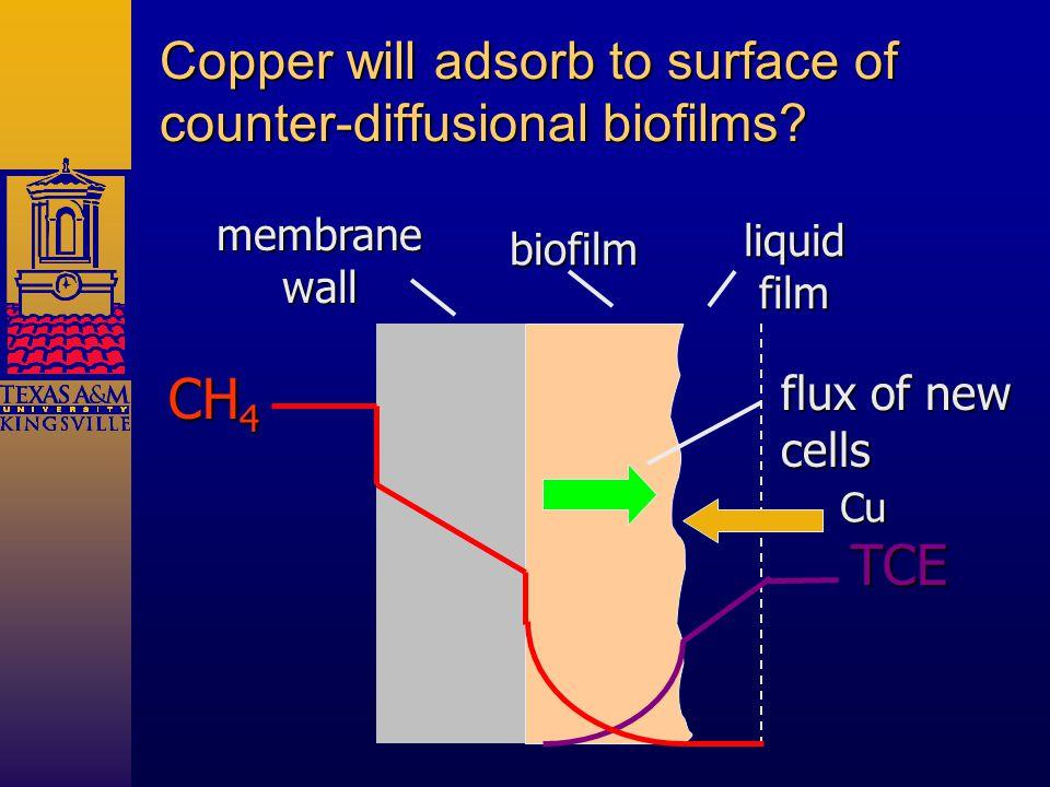 membrane wall biofilm liquidfilm Copper will adsorb to surface of counter-diffusional biofilms.