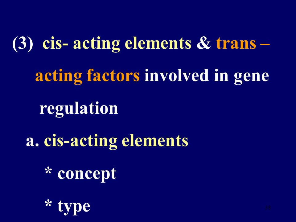 37 2. Regulation of gene expression in eukaryotes (1) character of regulation (2) activation of chromatin