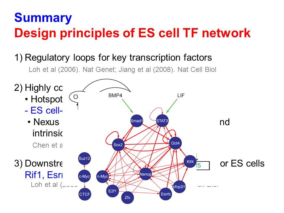Summary Design principles of ES cell TF network 1)Regulatory loops for key transcription factors Loh et al (2006).