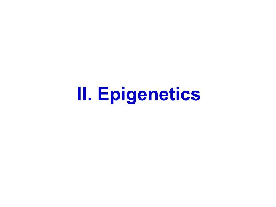 II. Epigenetics