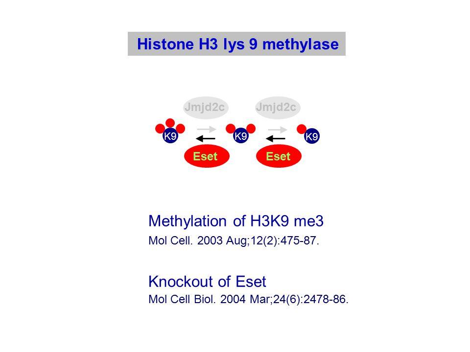 Histone H3 lys 9 methylase Mol Cell. 2003 Aug;12(2):475-87.