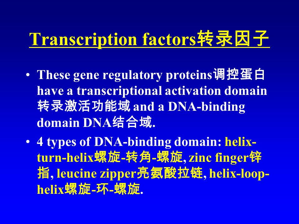 Transcription factors 转录因子 These gene regulatory proteins 调控蛋白 have a transcriptional activation domain 转录激活功能域 and a DNA-binding domain DNA 结合域.