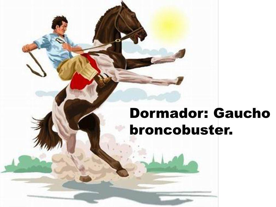 Dormador: Gaucho broncobuster.