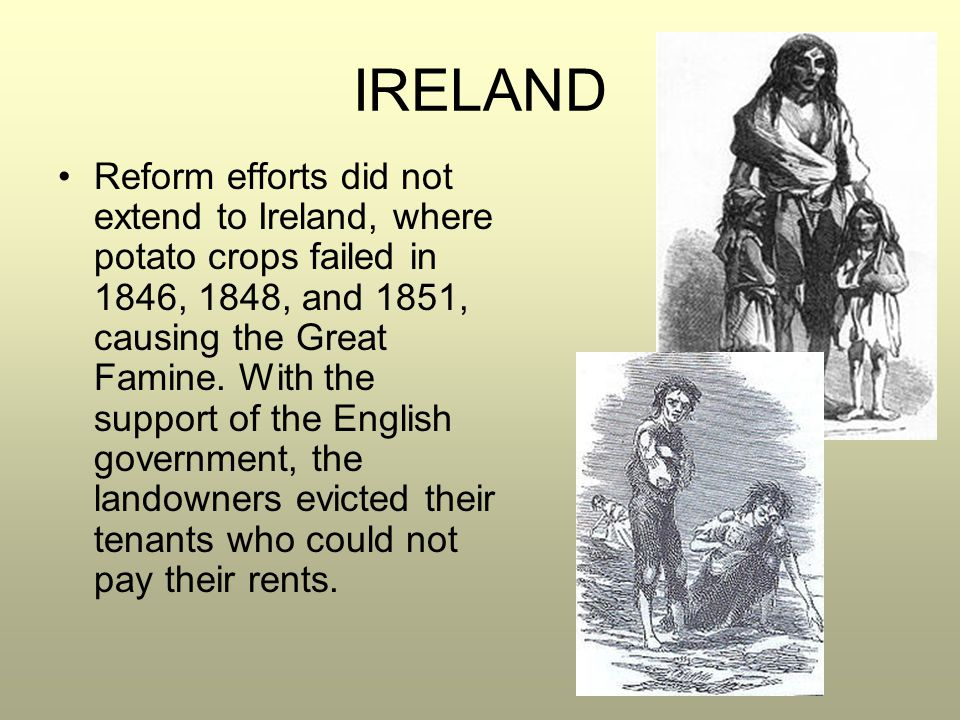 IRELAND Reform efforts did not extend to Ireland, where potato crops failed in 1846, 1848, and 1851, causing the Great Famine. With the support of the