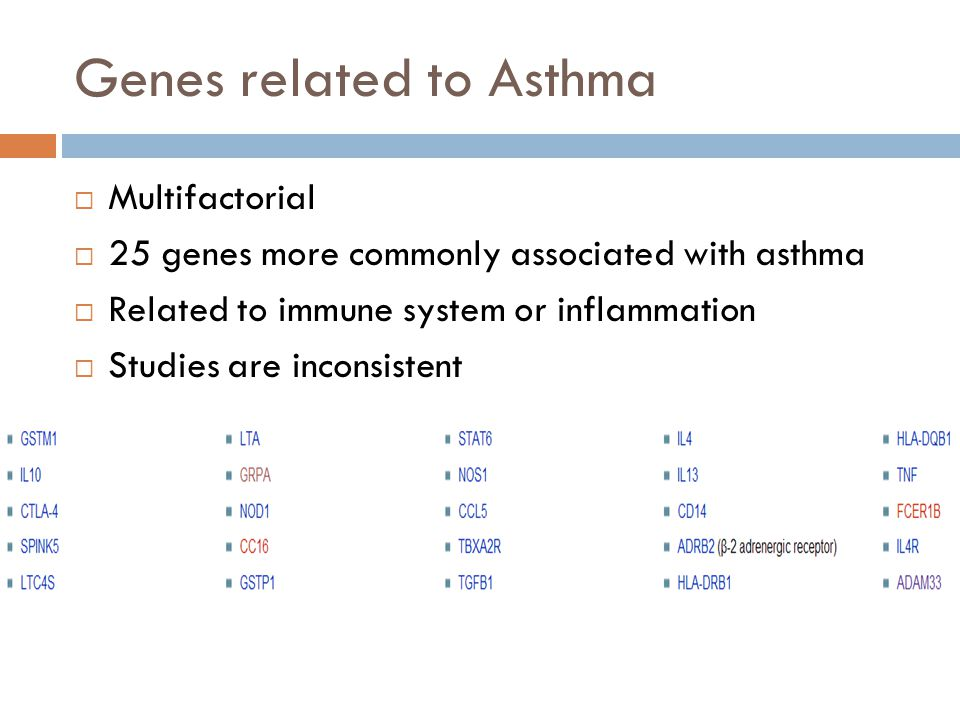 Genes related to Asthma  Multifactorial  25 genes more commonly associated with asthma  Related to immune system or inflammation  Studies are inconsistent