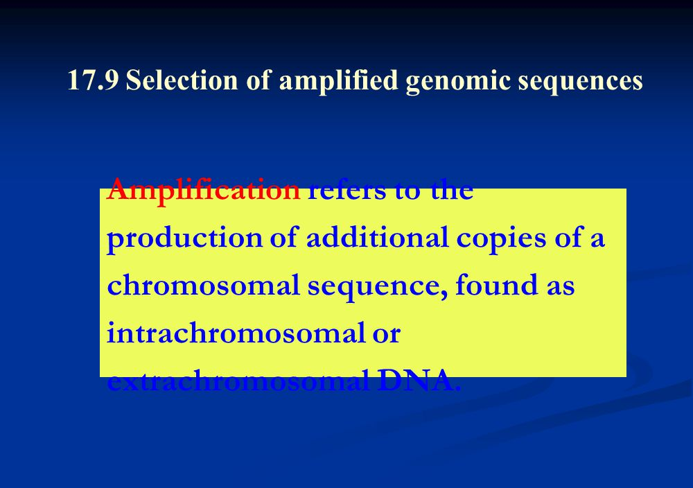 Amplification refers to the production of additional copies of a chromosomal sequence, found as intrachromosomal or extrachromosomal DNA.