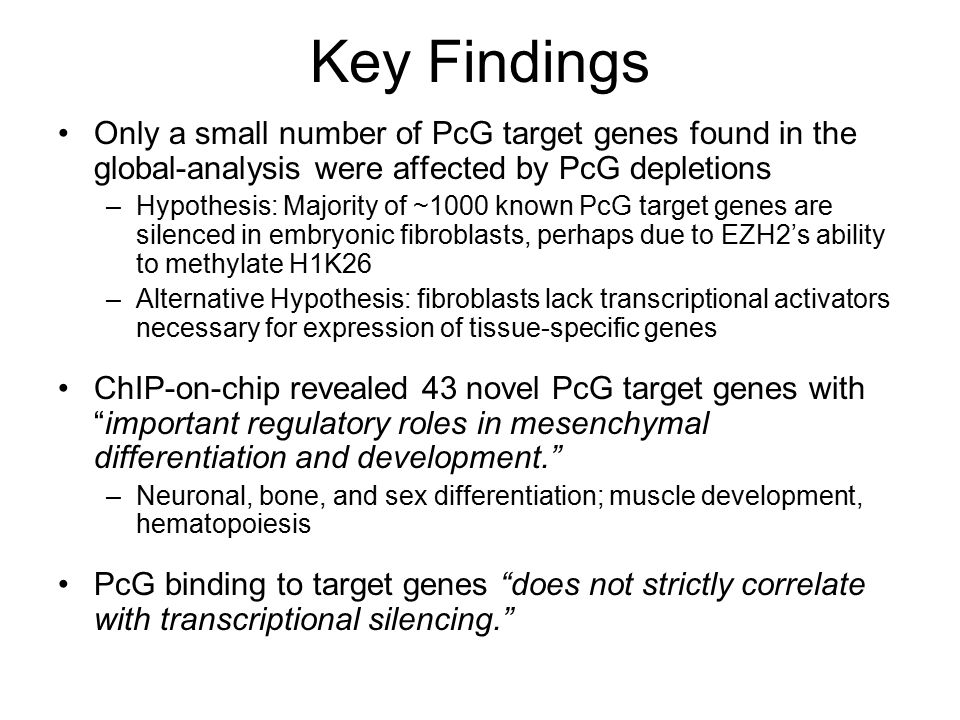 Key Findings Only a small number of PcG target genes found in the global-analysis were affected by PcG depletions –Hypothesis: Majority of ~1000 known PcG target genes are silenced in embryonic fibroblasts, perhaps due to EZH2's ability to methylate H1K26 –Alternative Hypothesis: fibroblasts lack transcriptional activators necessary for expression of tissue-specific genes ChIP-on-chip revealed 43 novel PcG target genes with important regulatory roles in mesenchymal differentiation and development. –Neuronal, bone, and sex differentiation; muscle development, hematopoiesis PcG binding to target genes does not strictly correlate with transcriptional silencing.
