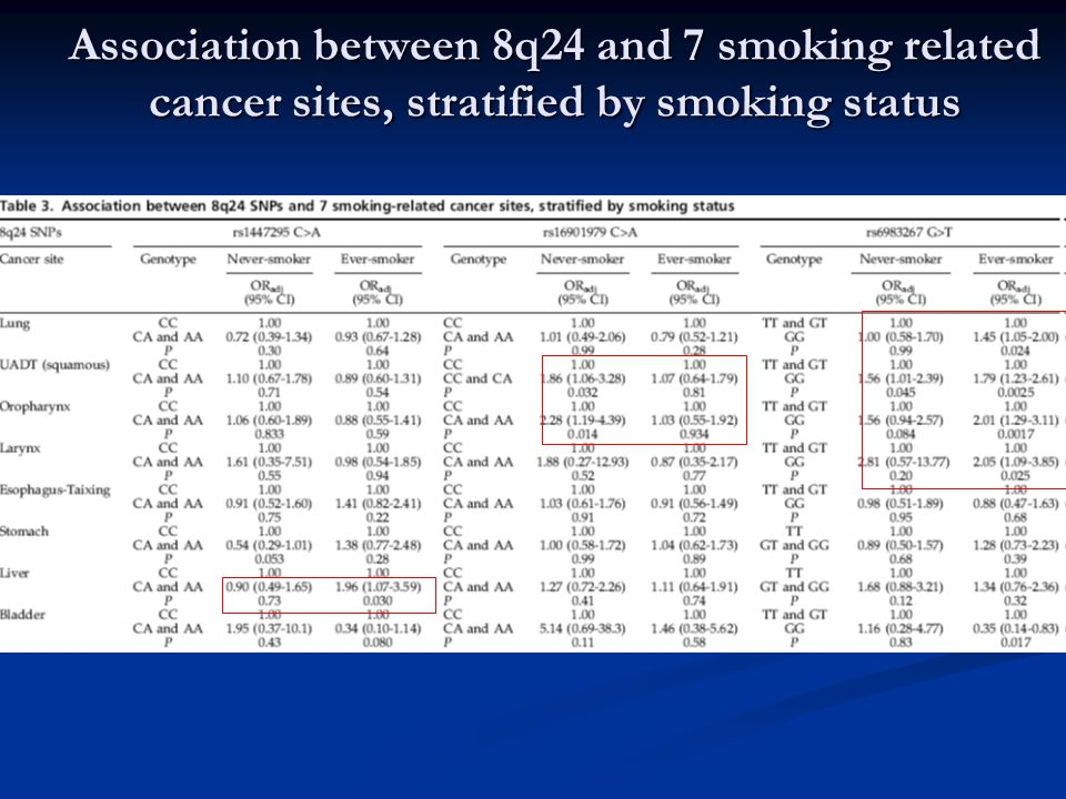 Association between 8q24 and 7 smoking related cancer sites, stratified by smoking status