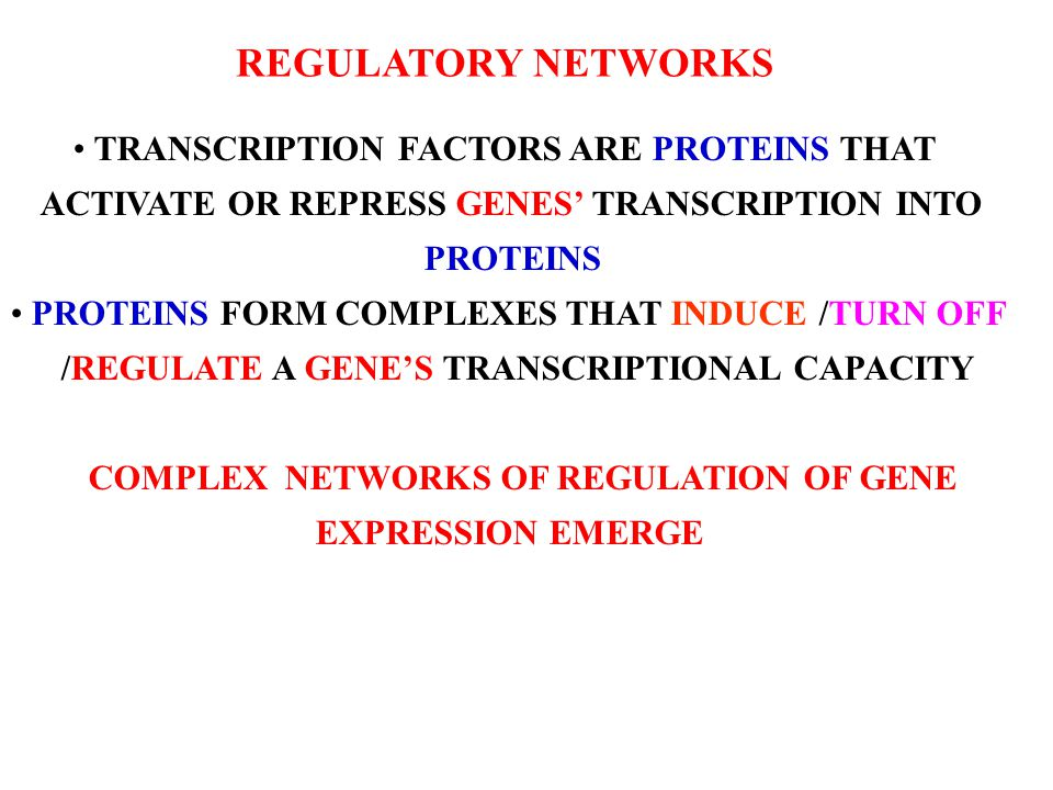 REGULATORY NETWORKS TRANSCRIPTION FACTORS ARE PROTEINS THAT ACTIVATE OR REPRESS GENES' TRANSCRIPTION INTO PROTEINS PROTEINS FORM COMPLEXES THAT INDUCE